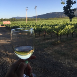 Happier times: enjoying a glass of wine on the Napa Valley Wine Train.